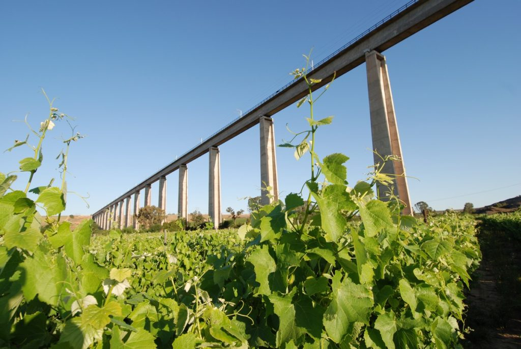 The Saldanha-Sishen Train Bridge over Melkboomsdrift