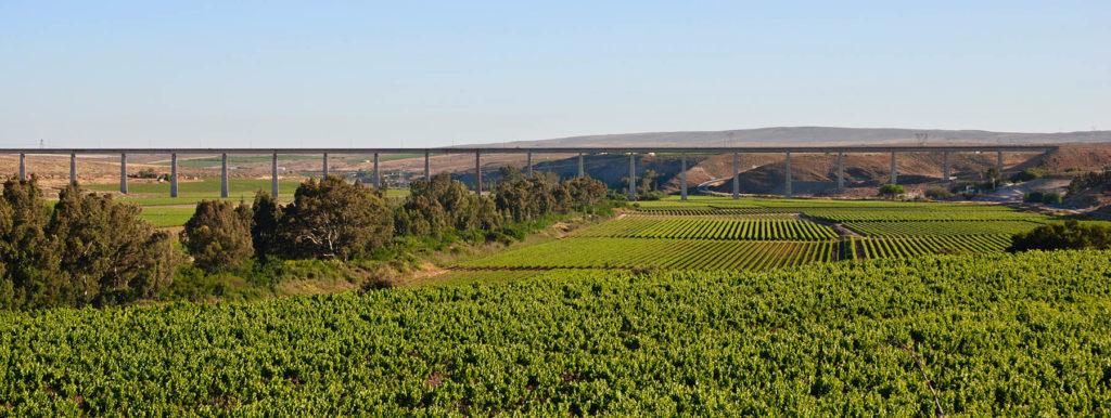Spectacular vineyard views and views of the Saldanha-Sishen Train Bridge